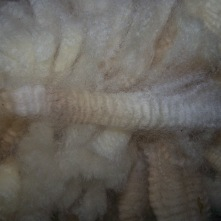 A lock of Cupcakes fleece.